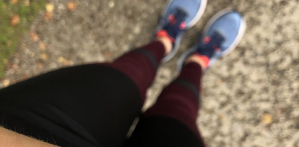 Belastung heartmicniva: ohne krücken laufen Treppe Laufen