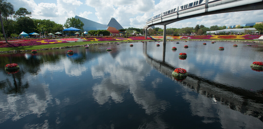 Monorail over flower fields