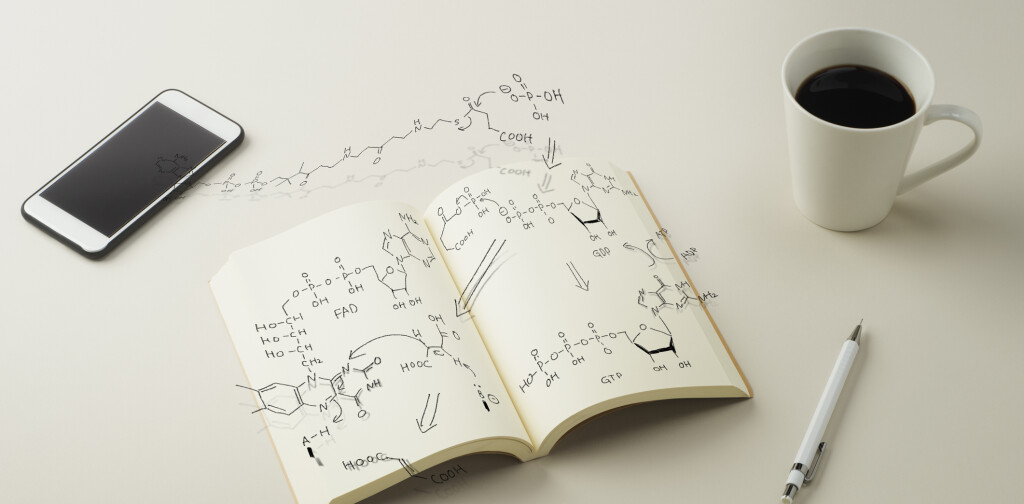 Scheme metabolism is depicted in notebook