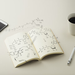 Scheme metabolism is depicted in notebook